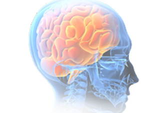 Neurology Medical Billing Services