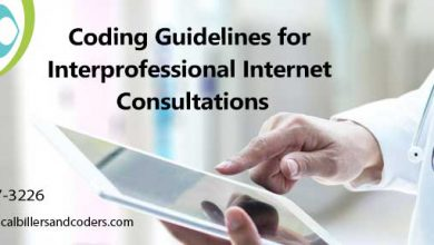 Coding Guidelines for Interprofessional Internet Consultations