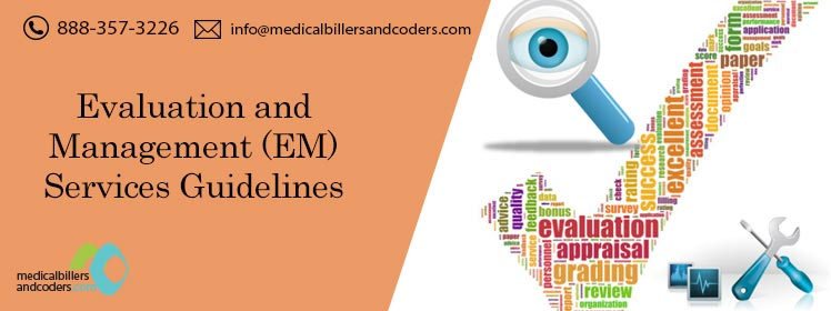 Article-Evaluation-and-Management-Services-Guidelines